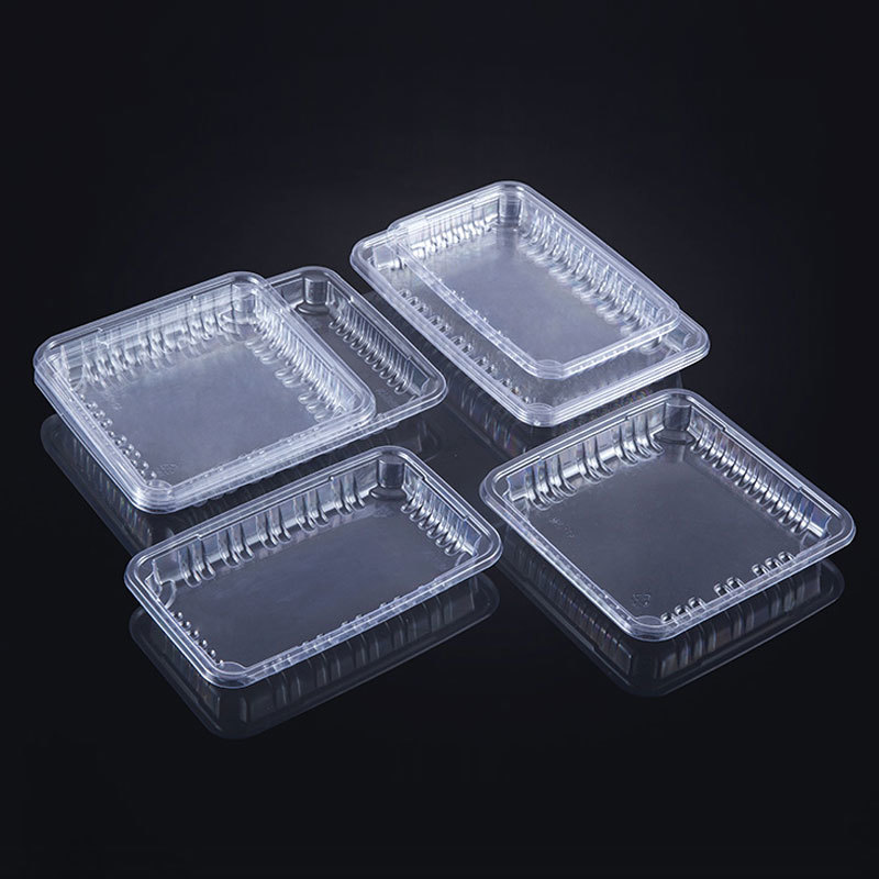 WH-105 transparent trays for fresh fruits and vegetables